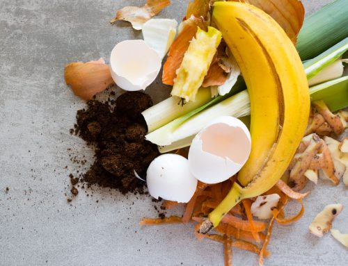 Are You Interested in the Topic of Food Waste?