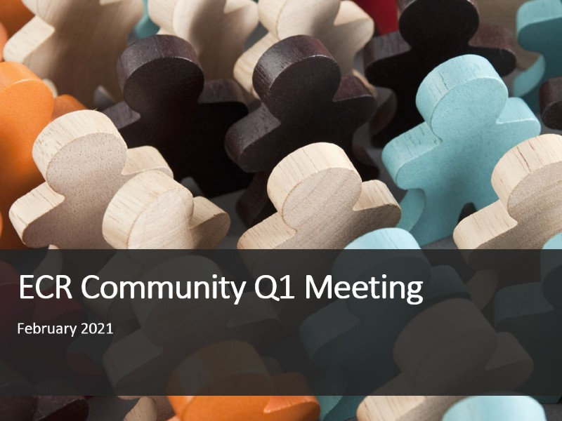Q1 Meeting, February 2021